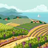 Lantligt landskap stock illustrationer