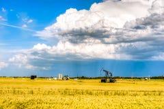 Lantligt landskap av Alberta, Kanada Royaltyfri Fotografi