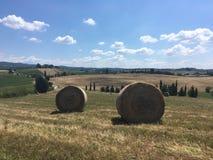 Lantligt landskap av sommarfält av Tuscany Royaltyfri Foto