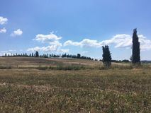 Lantligt landskap av sommarfält av Tuscany Arkivfoto