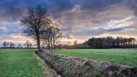 Lantligt landskap, fält med träd nära ett dike och färgrik solnedgång med dramatiska moln, Weelde, Belgien arkivfoto