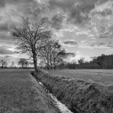 Lantligt landskap, fält med träd nära ett dike och solnedgång med dramatiska moln, Weelde, Belgien royaltyfri foto