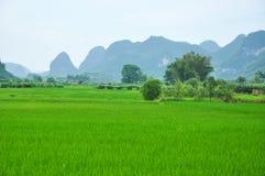 Lantligt landskap för härlig karst på Guilin, Kina Royaltyfri Fotografi