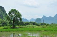 Lantligt landskap för härlig karst på Guilin, Kina Arkivbilder