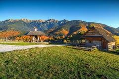 Lantligt landskap för höst nära kli, Transylvania, Rumänien, Europa royaltyfri bild