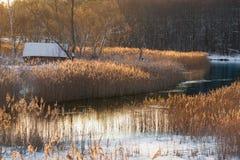 Lantligt landskap för morgonvinter: Ett gammalt Snö-täckt övergett hus på banken av en flod eller en sjö som omges av en härlig v Arkivfoto