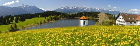 Lantligt landskap för panorama i Bayern royaltyfri bild