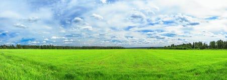 Lantligt landskap för sommar en panorama med ett fält och den blåa himlen royaltyfria bilder