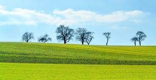Lantligt landskap för vårtid arkivbild