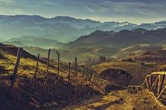 Lantligt landskap för rumänsk morgon Arkivfoto