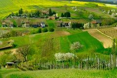 Lantligt landskap i bygd i södra Moravia Arkivbilder