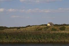 Lantligt landskap i Danmark Arkivbild