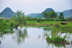 Lantligt landskap i Guilin, Kina Royaltyfria Bilder