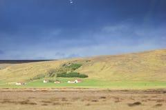 Lantligt landskap i Island Royaltyfri Foto
