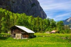 Lantligt landskap i Lauterbrunnen, Schweiz Royaltyfri Fotografi