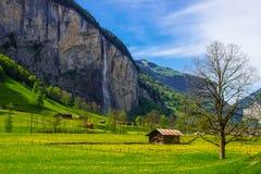 Lantligt landskap i Lauterbrunnen, Schweiz Royaltyfri Foto