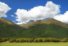 Lantligt landskap i Nya Zeeland Fotografering för Bildbyråer