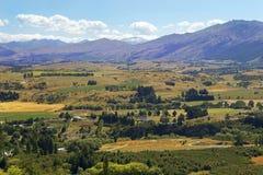 Lantligt landskap i Nya Zeeland Arkivbild