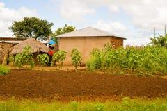 Lantligt landskap i Tanzania Fotografering för Bildbyråer
