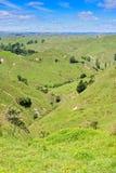 Lantligt landskap i Taranaki, Nya Zeeland Royaltyfri Bild