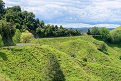 Lantligt landskap i Taranaki, Nya Zeeland Royaltyfri Fotografi