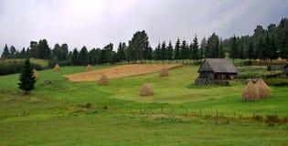Lantligt landskap i Transilvania, Carpathian berg, grön äng, gammalt hus, tystnad i mitt av naturen Royaltyfria Bilder