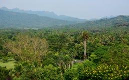 Lantligt landskap i Yogyakarta, Indonesien Arkivbild