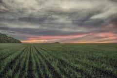 Lantligt landskap med en solnedgång och stormhimlen Arkivfoton