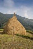 Lantligt landskap med fält och hus Royaltyfri Foto