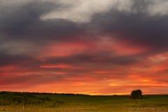 Lantligt landskap med härlig solnedgång Arkivbilder