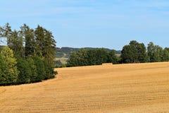 Lantligt landskap med jordbruks- fält Fältet skördas Landskap på solnedgången Fotografering för Bildbyråer
