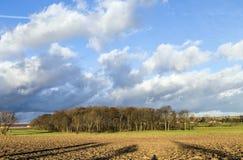Lantligt landskap med plogad fält och blå himmel Arkivbild