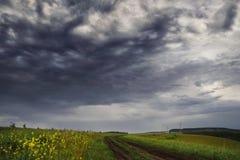 Lantligt landskap med stormhimlen Arkivfoto