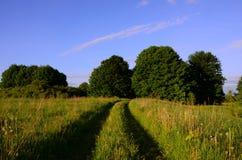 Lantligt landskap med vägen Royaltyfria Bilder