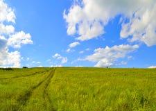 Lantligt landskap med vägen och blå himmel Royaltyfri Fotografi