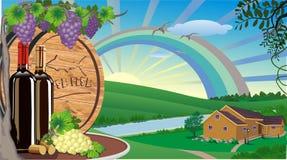 Lantligt landskap med vin och druvor och trävinfat Arkivbild