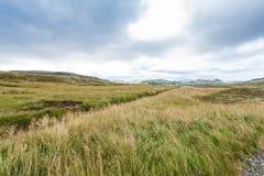 lantligt landskap nära den Skeggjastadir lantgården i Island Royaltyfria Bilder