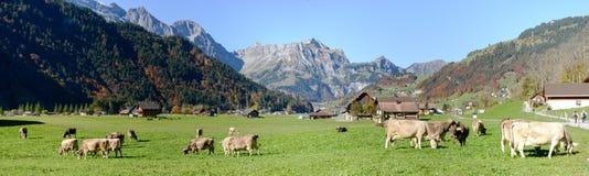 Lantligt landskap på byn av Engelberg på Schweiz Arkivfoto