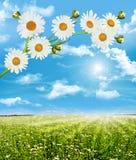 Lantligt landskap på en solig dag i sommar Arkivbilder