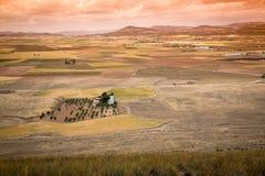 Lantligt landskap runt om Consuegra, Castile-La Mancha, Spanien Royaltyfri Fotografi