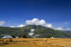 Lantligt landskap, Samosir ö. Royaltyfria Bilder