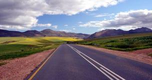 Lantligt landskap Sydafrika för ändlös väg royaltyfri foto