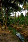 lantligt landskap thailand Arkivfoto