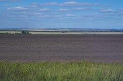 Lantligt landskapfält med åkermark Arkivbilder