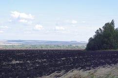 Lantligt landskapfält med åkermark Royaltyfria Foton