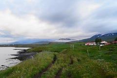 Lantligt lantbrukarhem i Icelan Arkivfoton
