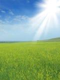 lantligt solljus för liggande arkivfoto