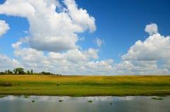 Lantligt sommarflodlandskap Arkivfoton