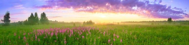 Lantligt sommarlandskap med soluppgång arkivfoto