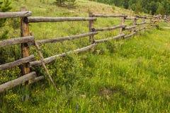 Lantligt staket och vildblommor Arkivfoton